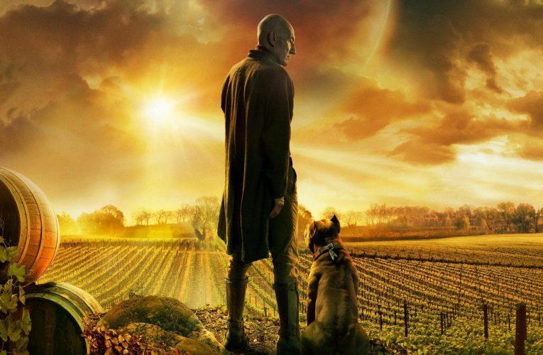 Picard, los sintéticos, las diferencias y la vida